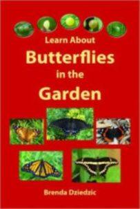 Learn_about_butterflies_in_the_garden