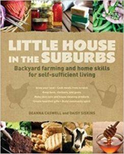 Little_house_in_the_suburbs